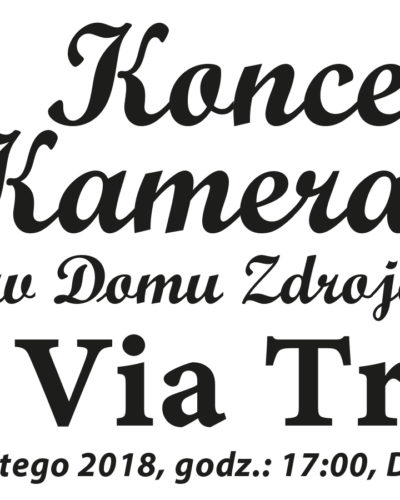 Koncert Kameralny w Domu Zdrojowym 11 lutego